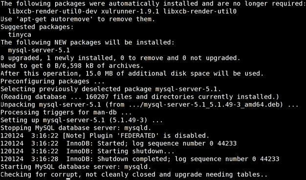 install a mysql database server on debian or ubunto step 7 success output